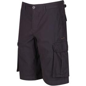 Regatta Shoreway II - Shorts Homme - gris
